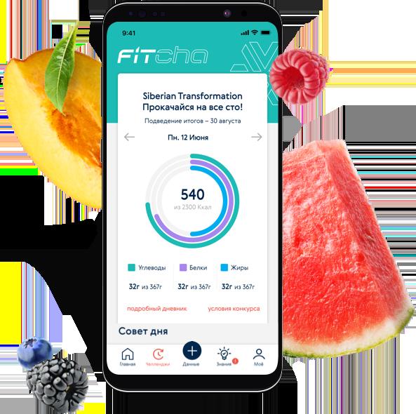 Мобильное приложение FitCha