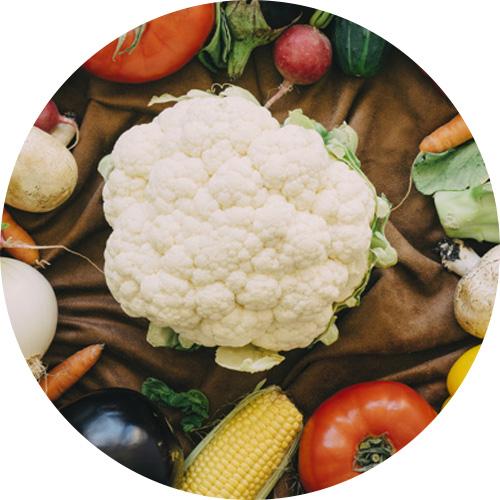 Кальций из растительной пищи